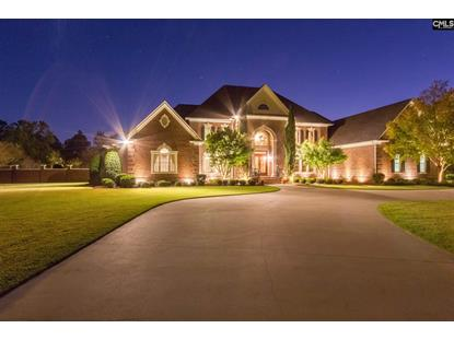 1 Beaver Ridge Court, Elgin, SC