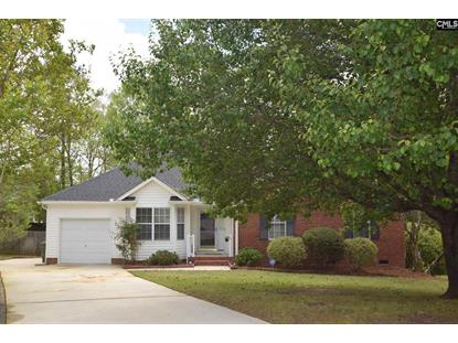24 Northstone Court, Irmo, SC