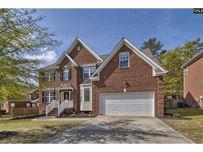405 Mana Vista Court, Lexington, SC