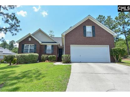 3 Wood Turtle Court, Columbia, SC
