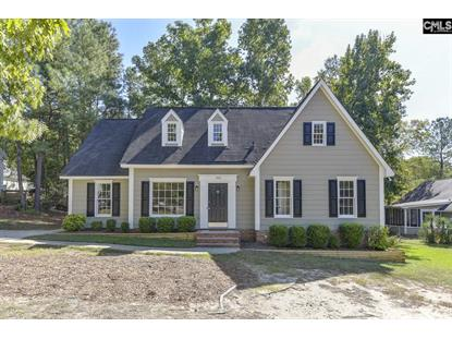 205 Dyers Hall Road Irmo, SC MLS# 481638