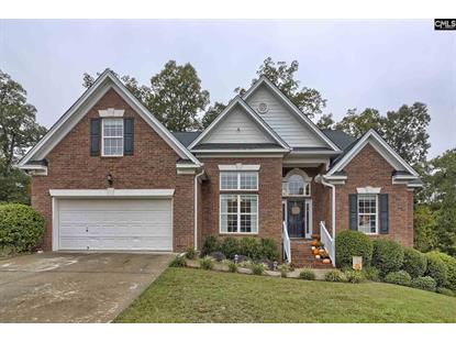 145 Red Ash Lane Lexington, SC MLS# 482854