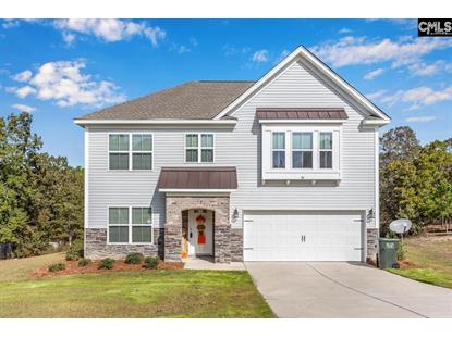 58 Carina Lane Lugoff, SC MLS# 483184