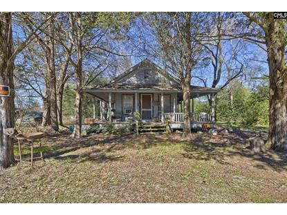 186 Zenker Road Lexington, SC MLS# 488734