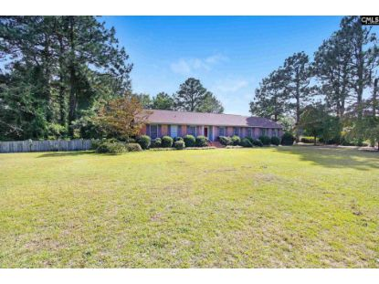 193 WILDWOOD Lane Lugoff, SC MLS# 503156