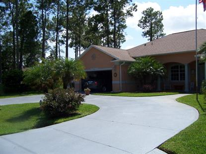 53 Kankakee Trail , Palm Coast, FL