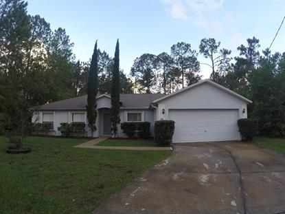 24 Zorach Place  Palm Coast, FL MLS# 221429
