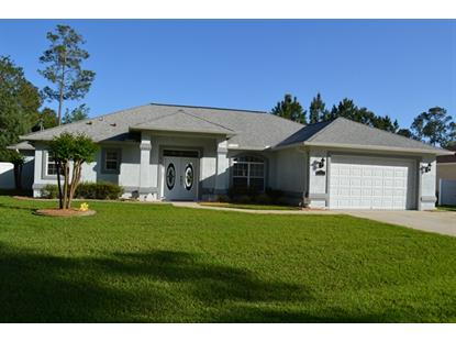 67 Kashmir Trail  Palm Coast, FL MLS# 221938