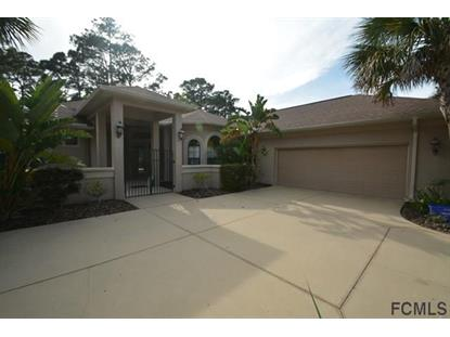 47 River Trail Drive  Palm Coast, FL MLS# 232635