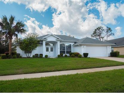 17 Mount Vernon Lane , Palm Coast, FL
