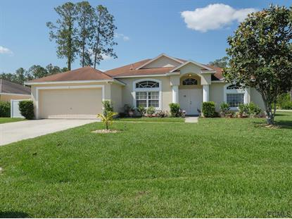 2 Ridley Lane  Palm Coast, FL MLS# 238244