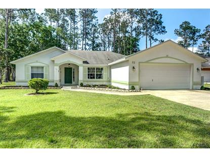 23 Ryecrest Lane  Palm Coast, FL MLS# 238590