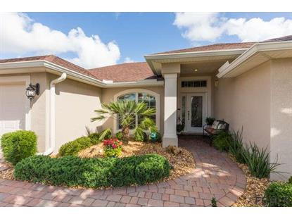 191 Arena Lake Dr  Palm Coast, FL MLS# 238887