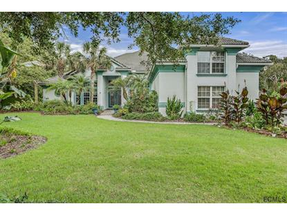 9 Spanish Moss Court , Palm Coast, FL