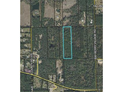 0 CR 335  Bunnell, FL MLS# 239695