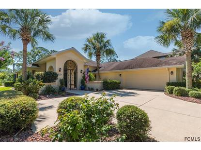 52 River Trail Drive , Palm Coast, FL