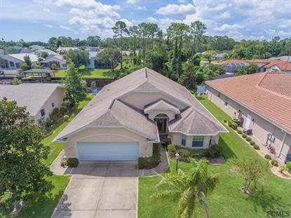 12 Commander Court  Palm Coast, FL MLS# 240859