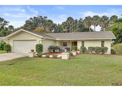 73 Courtney Place  Palm Coast, FL MLS# 243928