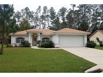 25 Rymer Lane  Palm Coast, FL MLS# 243946