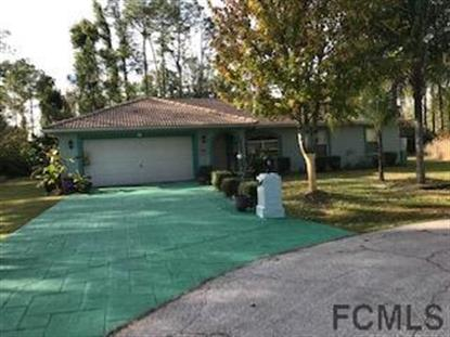 7 Ryecarr Place  Palm Coast, FL MLS# 243968