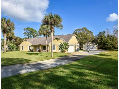 23 Walnut Ln  Ormond Beach, FL MLS# 255124