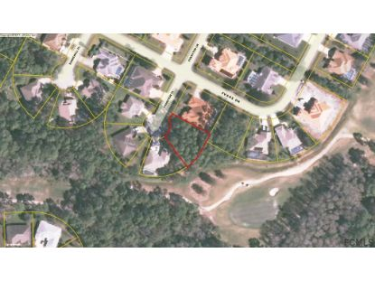 3 Evanston Pl  Palm Coast, FL MLS# 259496