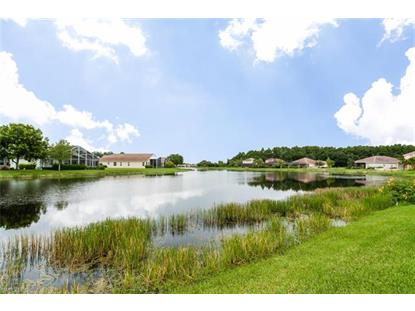 15509 Pricklegrass CT Alva, FL MLS# 217054954
