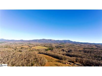 1140 Packs Mountain Ridge Road Taylors, SC MLS# 1335461