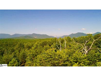 0 Christopher Road Tryon, NC MLS# 1357639
