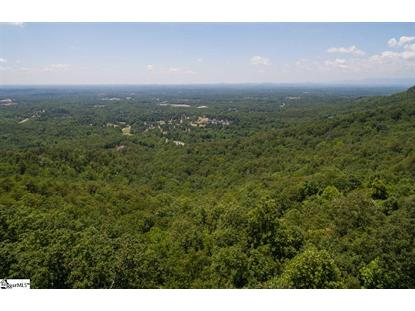 Altamont Road Greenville, SC MLS# 1382078