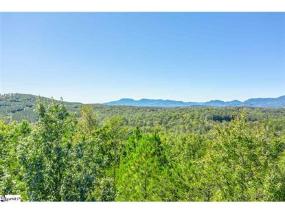 Prospect Point Drive Tryon, NC MLS# 1404376