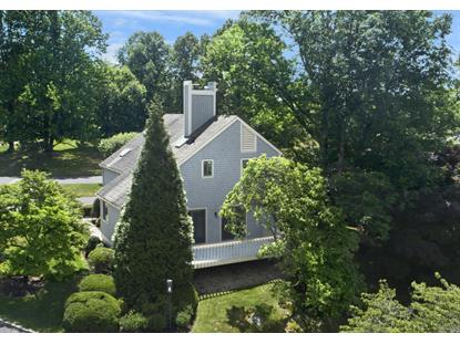 513 W Lyon Farm Drive Greenwich, CT MLS# 103751