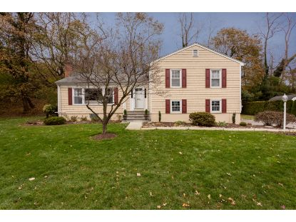 11 Mallard Drive Greenwich, CT MLS# 110758