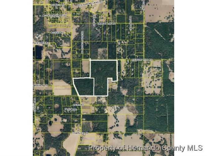 0 Hickory Hill Road, Brooksville, FL 34602