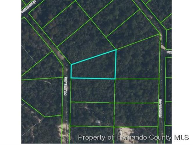 COLONEL AVE, Webster, FL 33597
