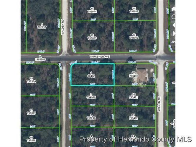 0 Thrasher Avenue, Weeki Wachee, FL 34614