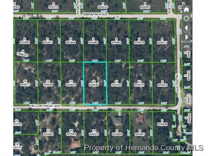 0 Yellowthroat Avenue, Weeki Wachee, FL 34614