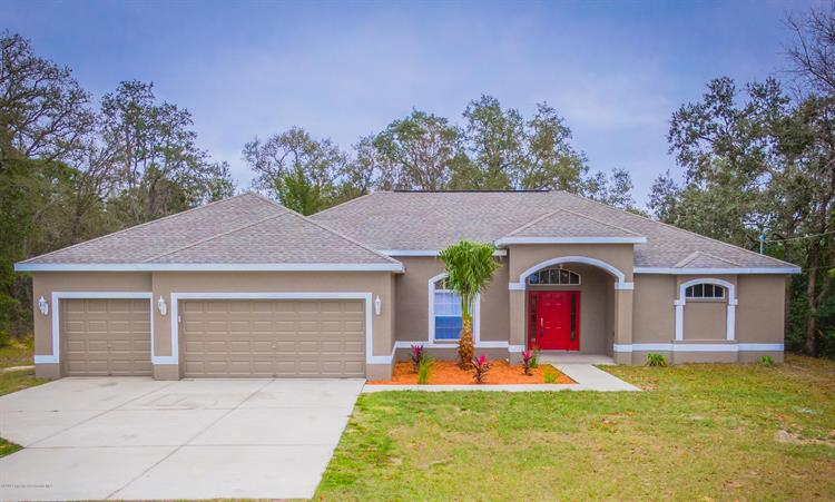 13016 Hooper Road, Weeki Wachee, FL 34614 - Image 1