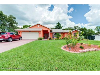 11353 Long Hill Court  Spring Hill, FL MLS# 2185907