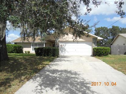 10389 Timbercrest Road, Spring Hill, FL