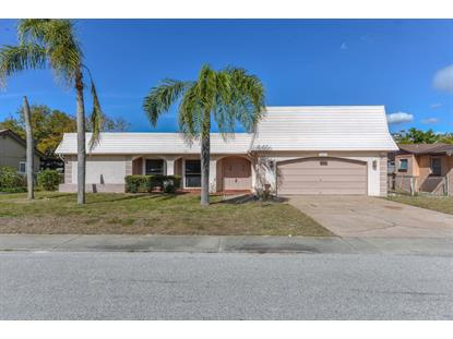 4219 Hillsdale Drive, New Port Richey, FL