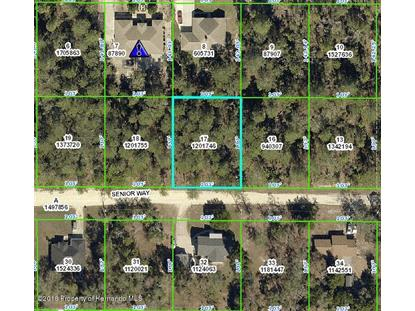 0 Senior Way, Weeki Wachee, FL