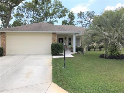 2345 Palm Springs Court Spring Hill, FL MLS# 2191864