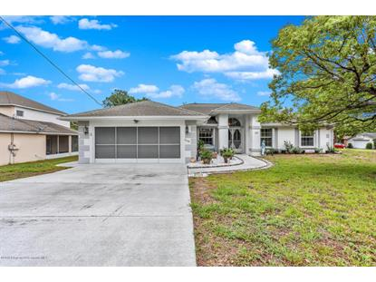 7028 Covewood Drive, Spring Hill, FL