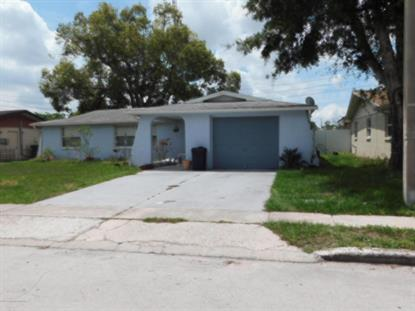 5552 Dolores Drive, Holiday, FL