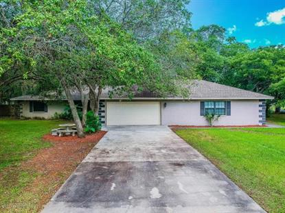 18119 Oak Way Drive Hudson, FL MLS# 2192658