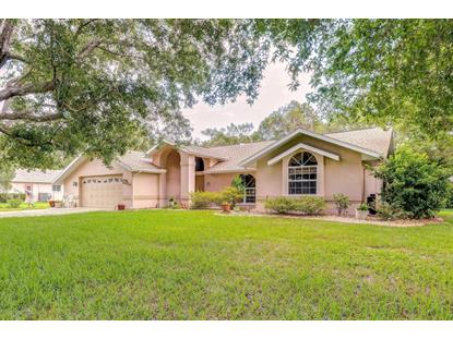 13094 Huntington Woods Avenue, Spring Hill, FL