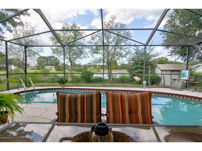 6555 Clearwater Drive, Spring Hill, FL