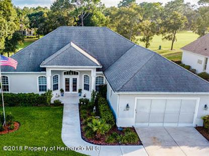 9132 Tarleton Circle Weeki Wachee, FL MLS# 2196540