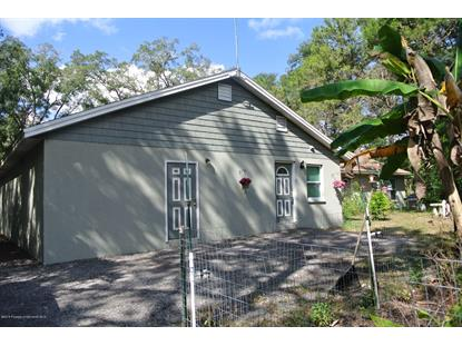 8200 Fort Dade Avenue, Brooksville, FL